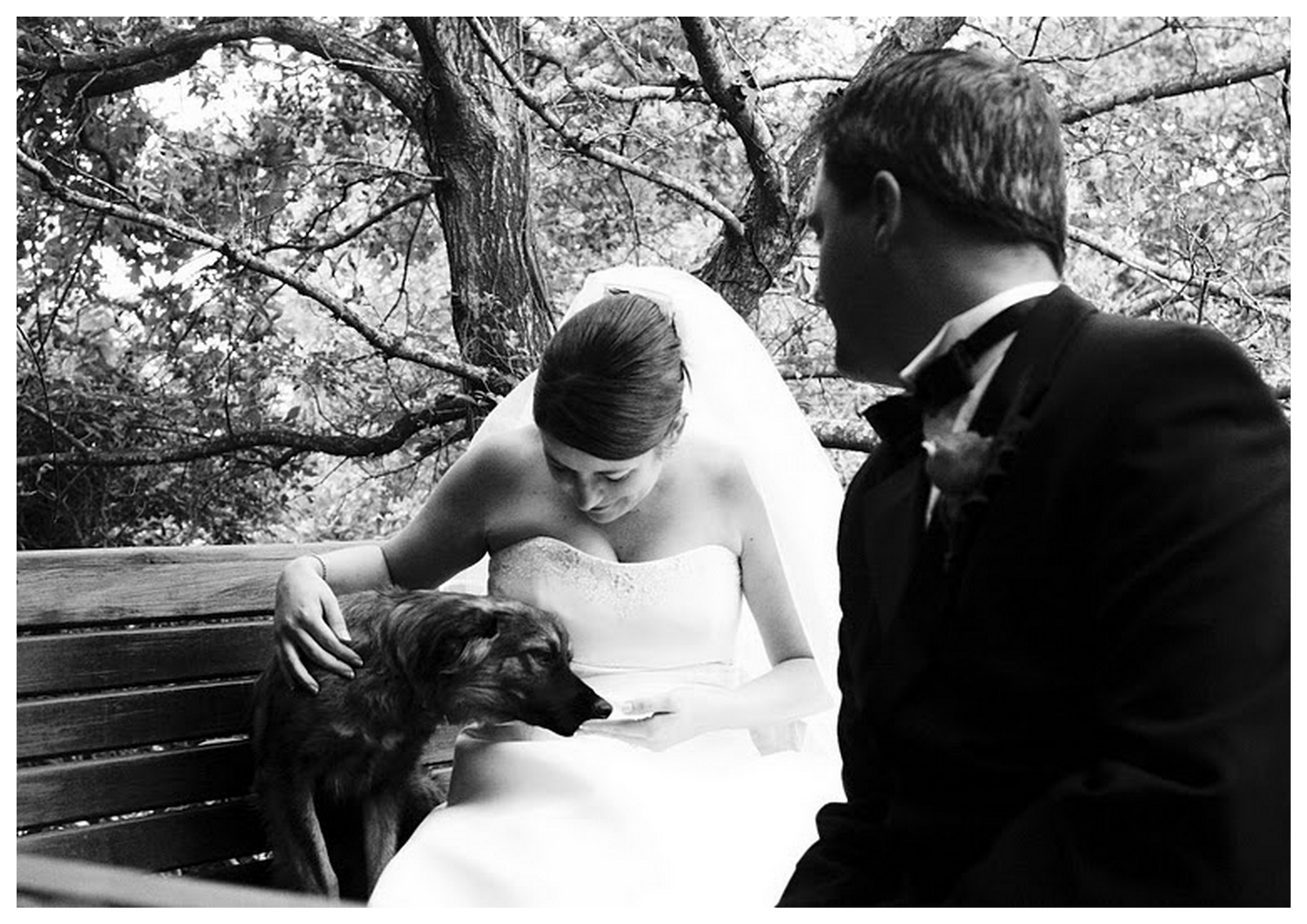 Real Wedding at Bontevlei {Lenore & Adrian} | SouthBound Bride