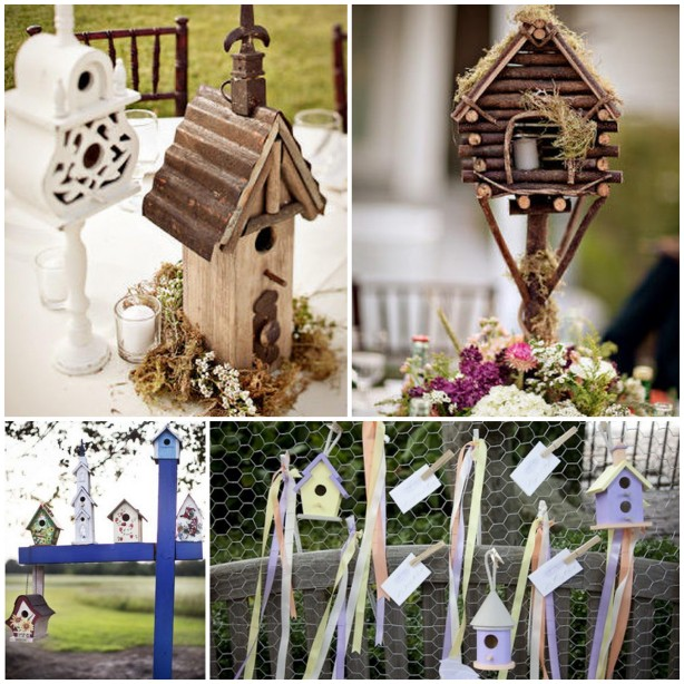 nw bird house plans