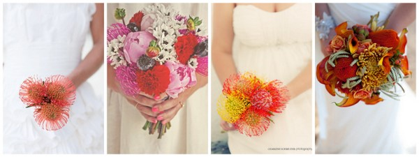 Wedding Flowers: Pincushion Proteas | SouthBound Bride